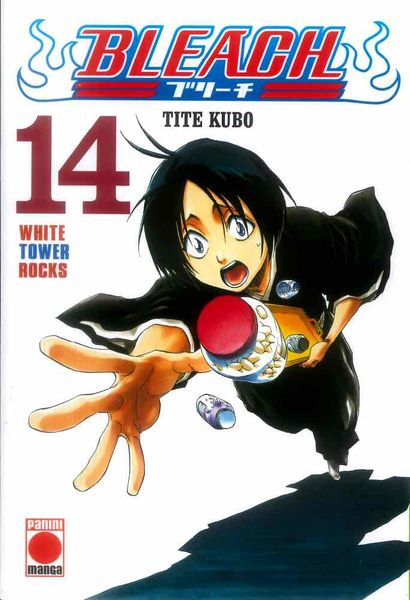 BLEACH 14 (COMIC)